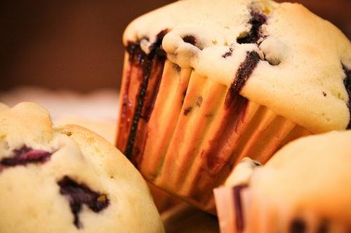 blaubeermuffins ohne zucker ernährung ohne zucker blaubeermuffins