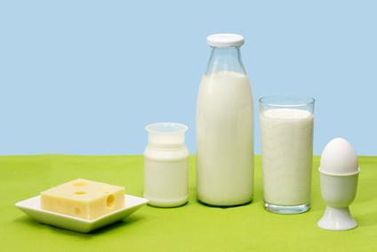 Frische Milch, Joghurt, Käse und Ei vor blauem Hintergrund